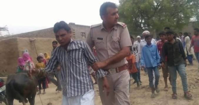 misdeed with cow, boy misdeed with cow, man beated by public, fatehabad