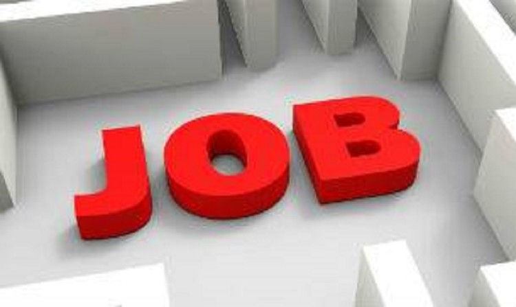 Engineer recruitment for 500 government posts, apply before August 17