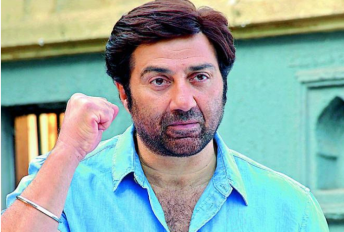 Sunny Deol All Films Hit Flop Box Office Collection