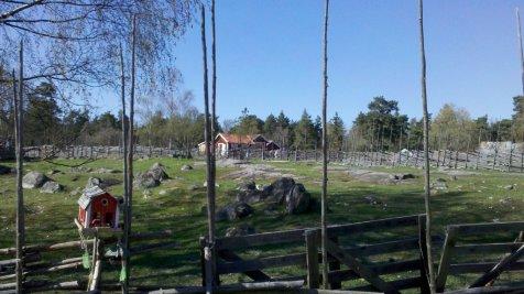 2011-04-24_15-23-12_364_Solna.resized