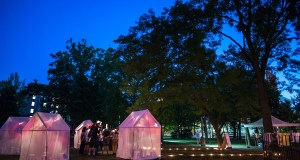 Tents with pink and yellow lights inside. In a grove of trees.