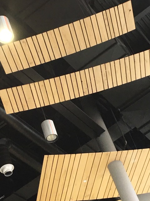 Photo of the ceiling taken by Brad Rothbart at the Republic of Inclusion.