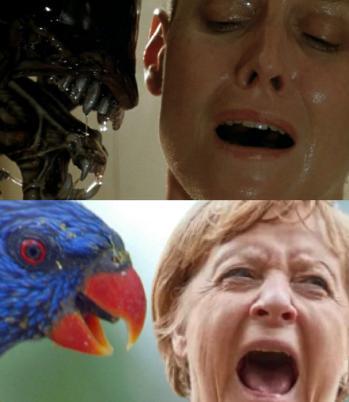 Alien und Merkel; Bild: Meme