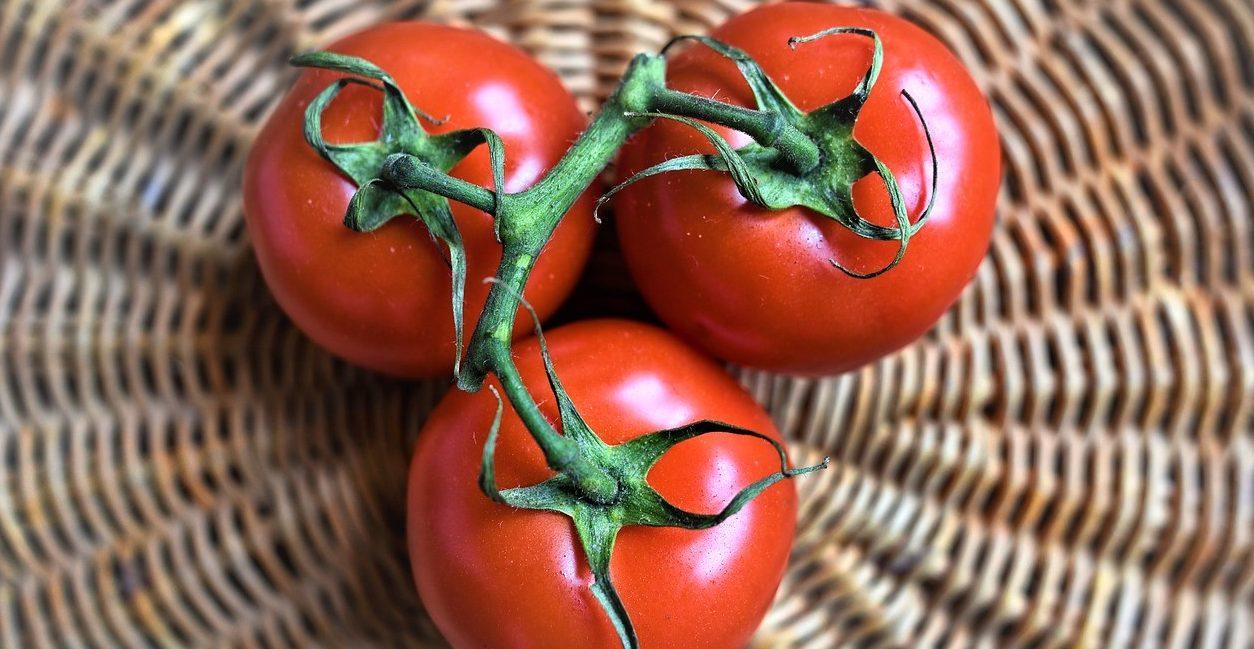 Come fare la salsa di pomodoro in casa