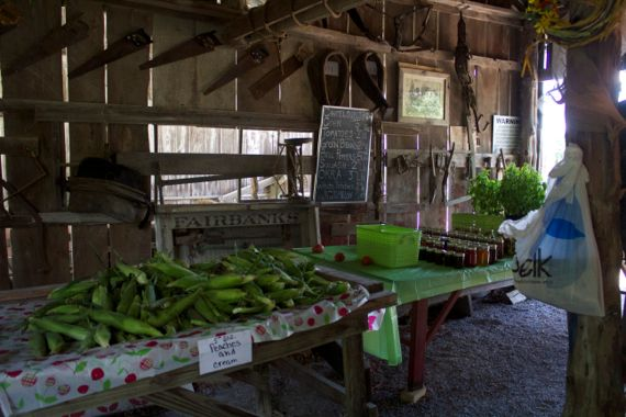 Burns Farm Produce Stand Open for the Summer 13  by Angela Roberts