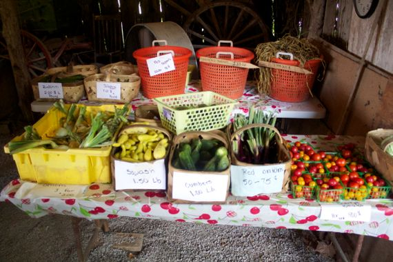 Burns Farm Produce Stand Open for the Summer 12  by Angela Roberts
