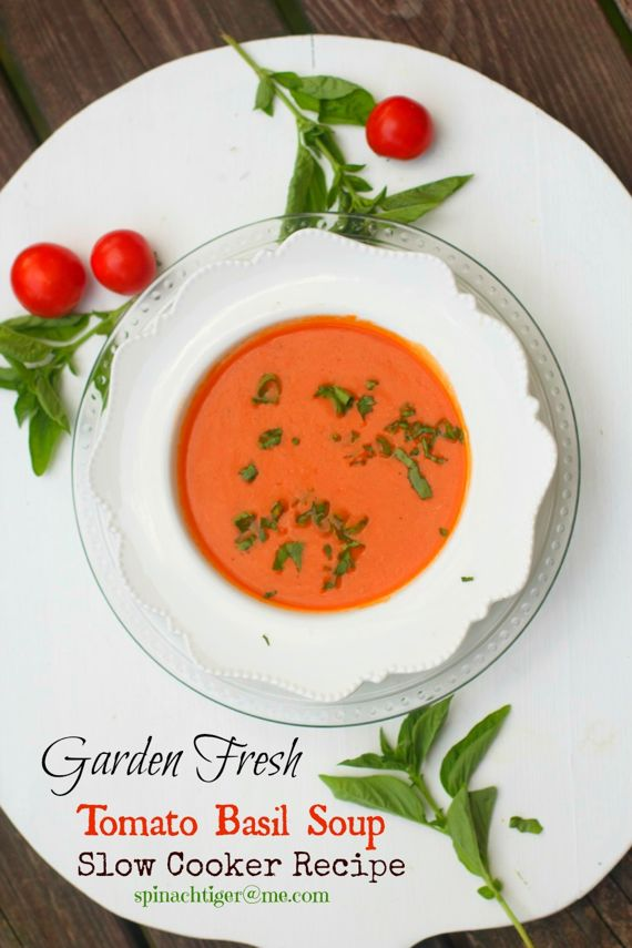 Garden Fresh Tomato Basil Soup by Angela Roberts