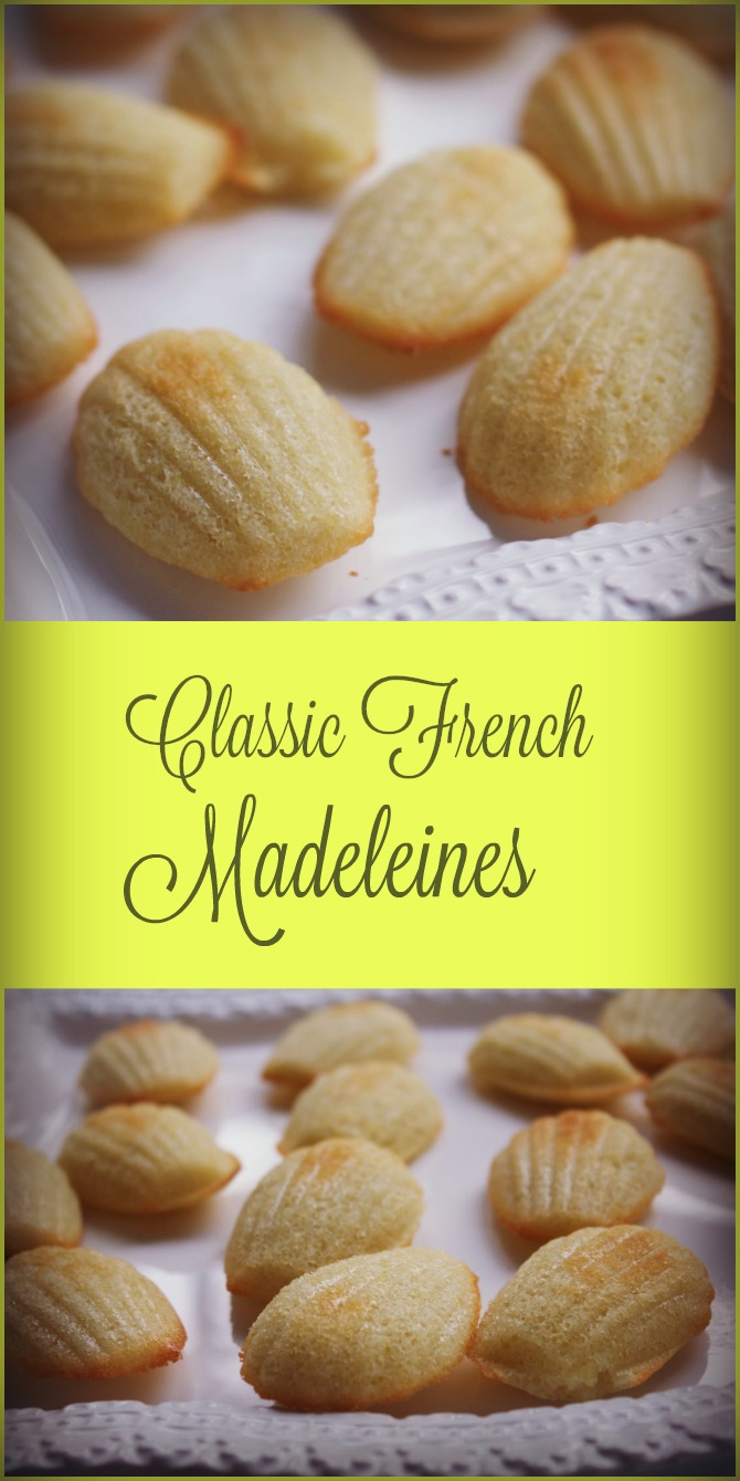 Classic French Madeleines from Spinach Tiger
