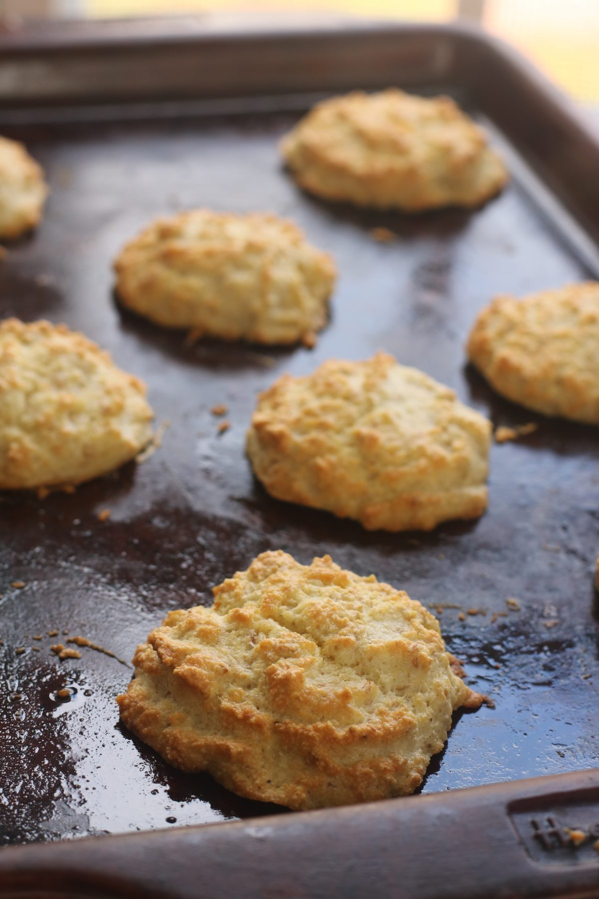 Grain Free Almond Flour Biscuits