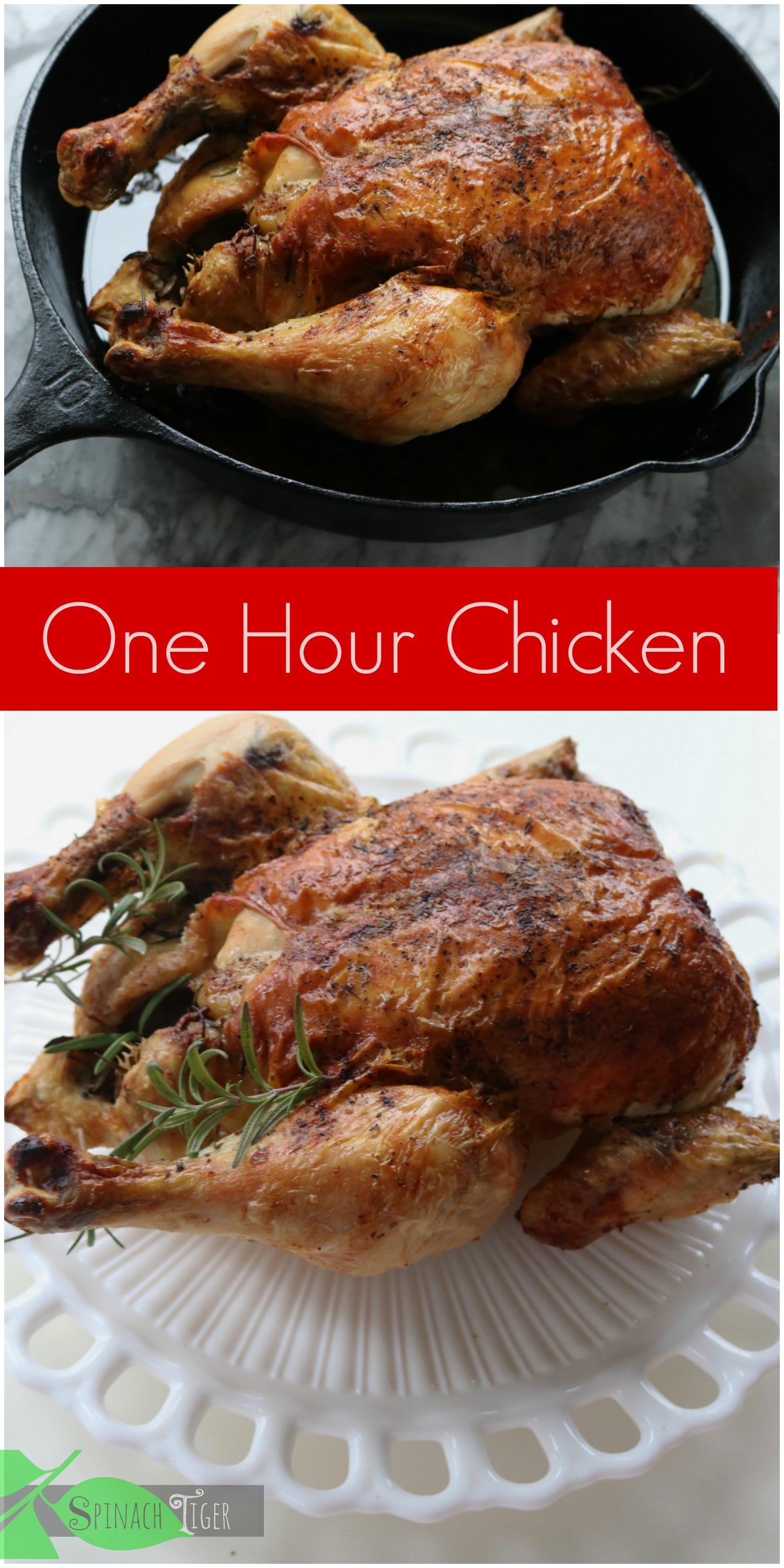Italian Roast Chicken Recipe and How to Roast Chicken in the Oven from Spinach Tiger
