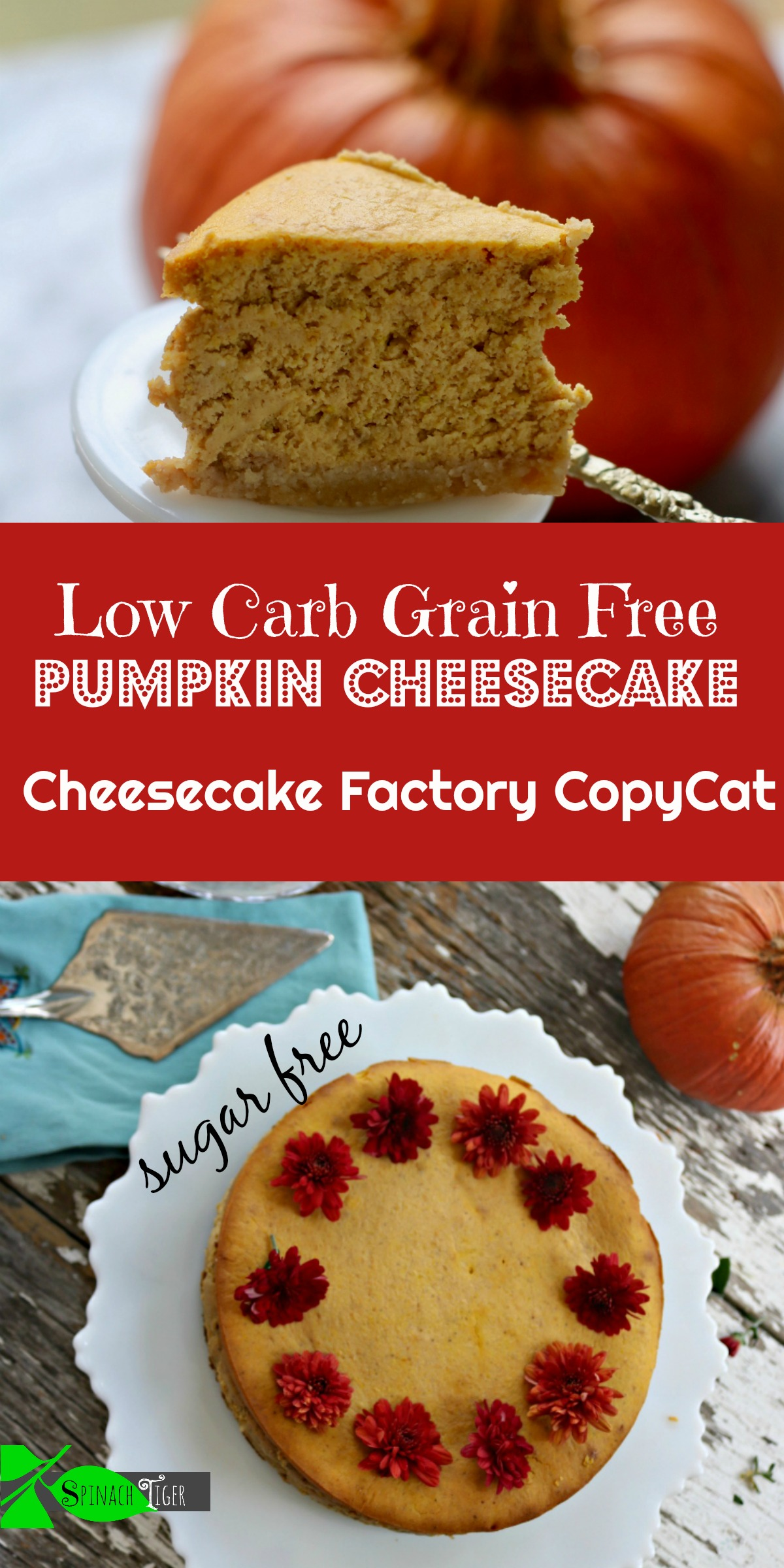 Low Carb, Keto Friendly Pumpkin Cheesecake from Spinach TIger. #ketopumpkincheesecake #lowcarbpumpkincheesecake via @angelaroberts