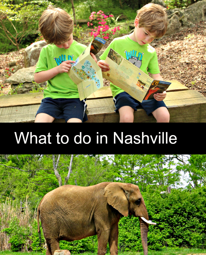 Nashville Zoo: Where to go, What to do in Nashville for Family Fun from Spinach Tiger