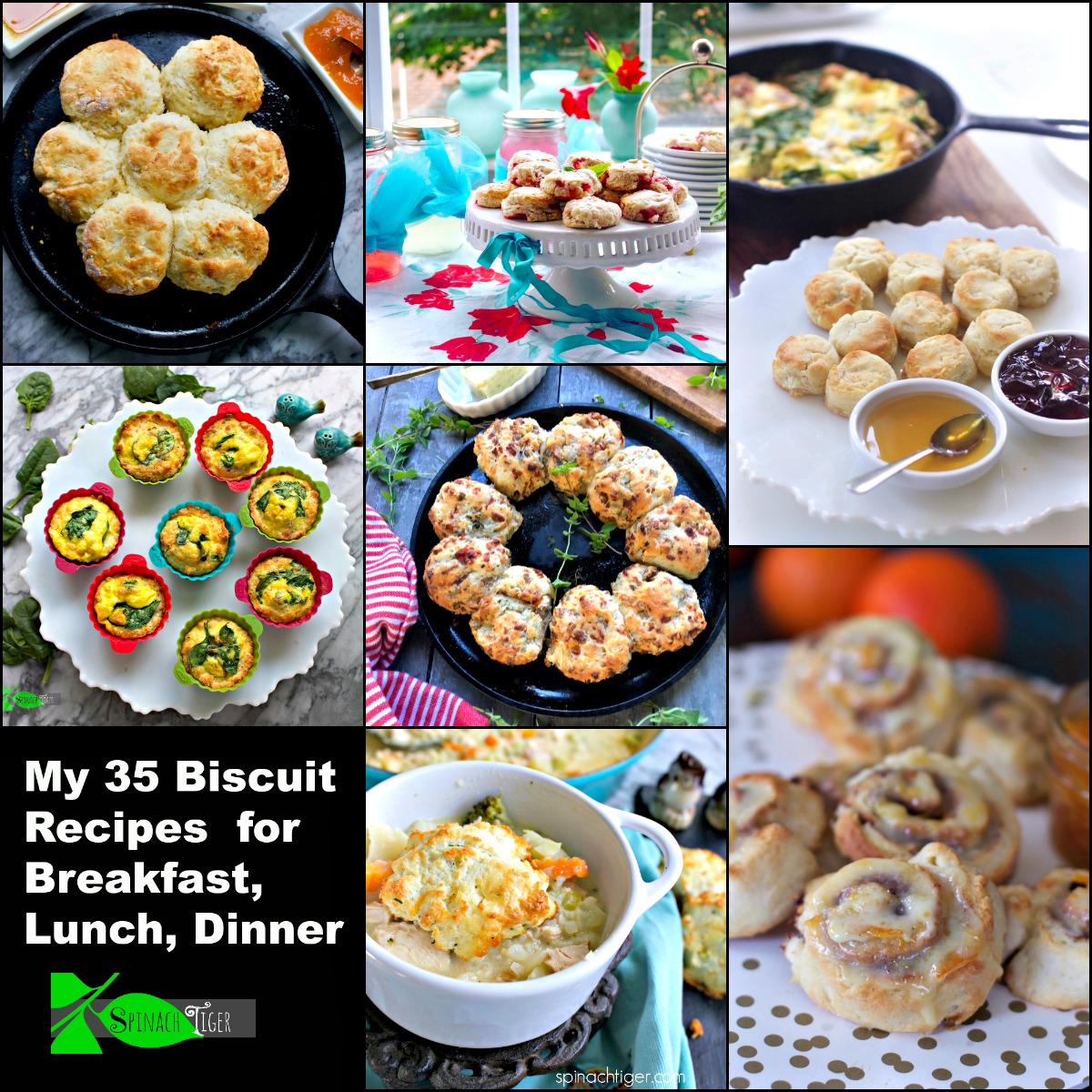 My very own 35 Biscuit Recipes (from scratch). Southern Fluffy biscuit, Cinnamon Roll Biscuit, Chicken and Biscuits, Shortcake Biscuits, Sweet Potato Biscuits, Italian Sausage Biscuits and More. Big variety with gluten free and keto options in addition to 30 traditional southern biscuit recipes, from #spinachtiger. #southernbiscuitrecipes #fluffybiscuits #sweetpotatobiscuits #southernfood via @angelaroberts