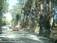 Woodside area