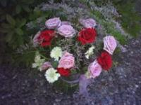 cell phone photo of roses