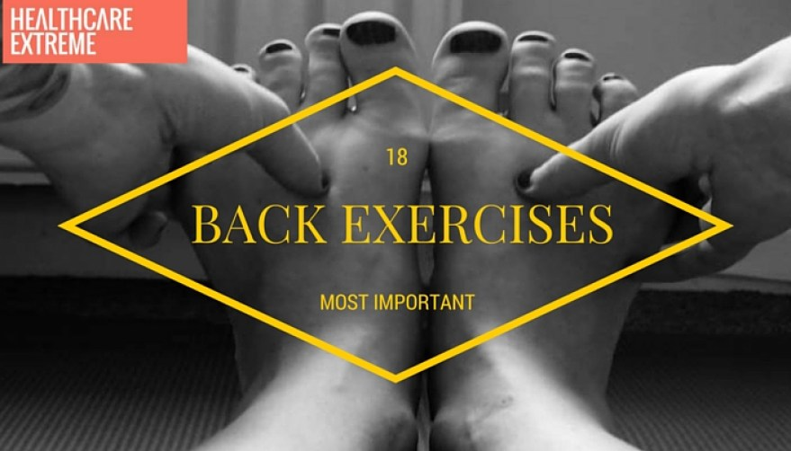 18 Most important back exercises