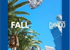 Download Fall (Remix) By Davido featuring Busta Rhymes & Prayah