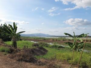 Mekong River west of Nong Khai