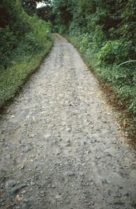 Crossing Mt Bromo,