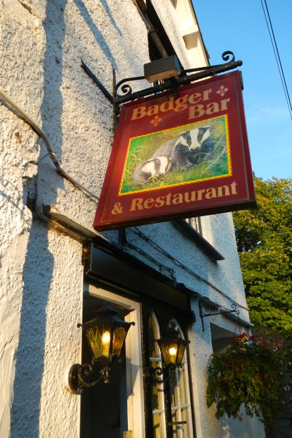 badgers in bars (Rydal)