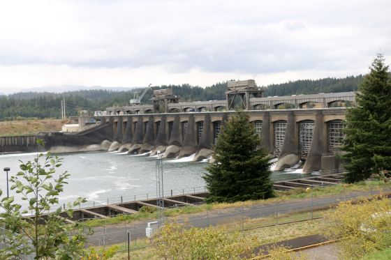 The Bonneville Dam, the first of FDR's New Deal dams on the Columbia.