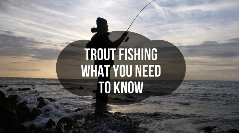 Trout-Fishing---What-You-Need-to-Know