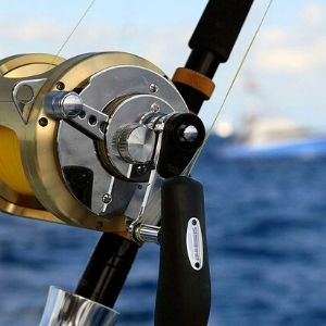 What To Look For In A Bass Reel