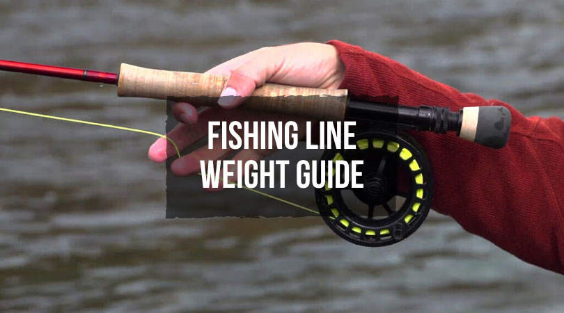 Fishing-Line-Weight-Guide
