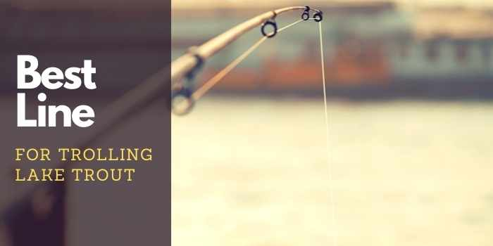 Best Line for Trolling Lake Trout