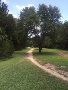 Walnut Creek Metropolitan Park Austin Texas