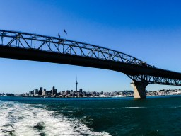 auckland new zealand harbour cruise