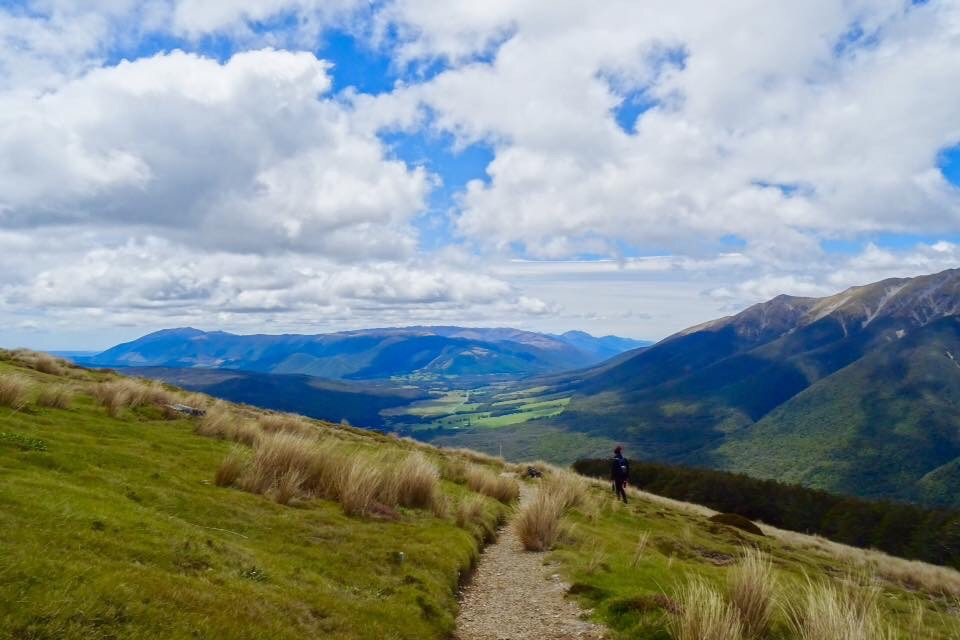 Working Holiday Visa Extension for New Zealand - spinthewindrose.com