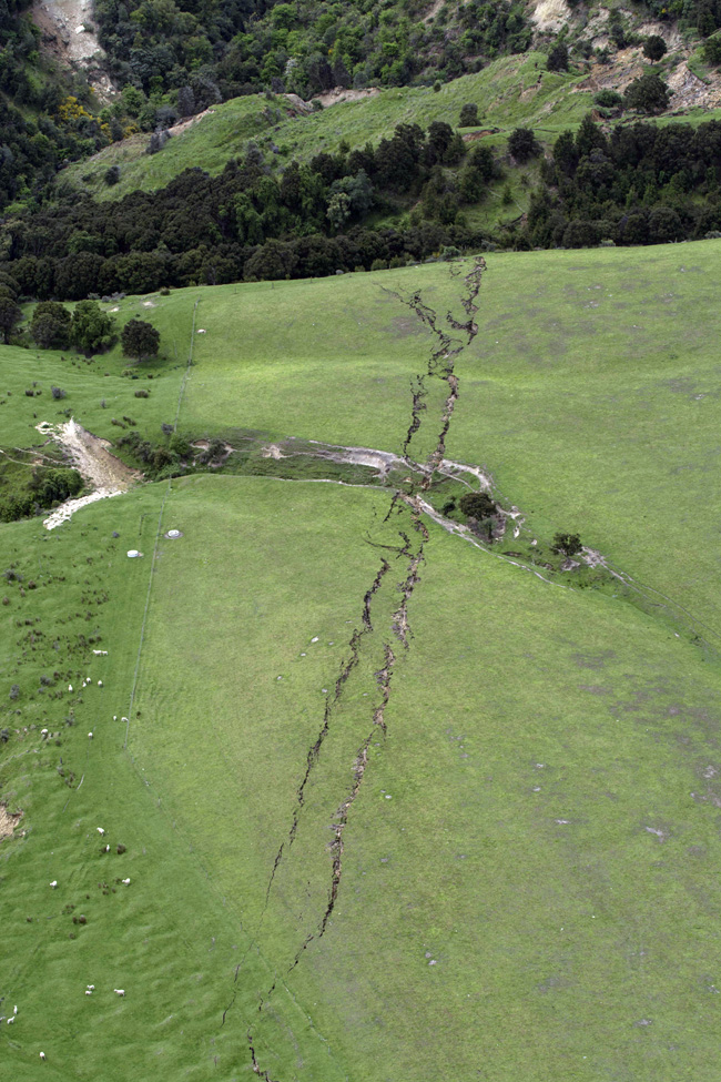 Cracks in the earth in farmland in Kaikoura