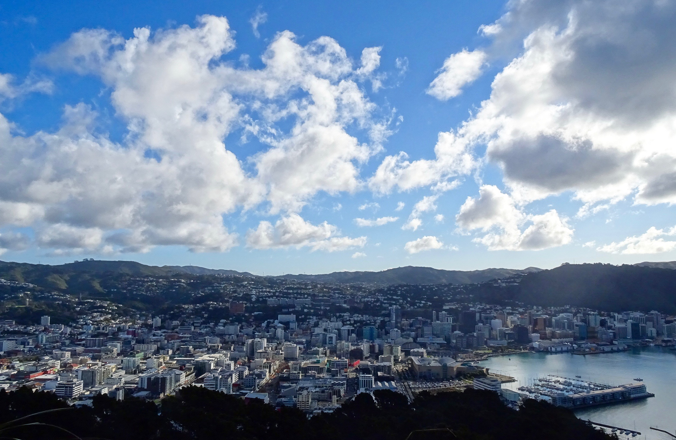 How to move to Wellington NZ - spinthewindrose.com