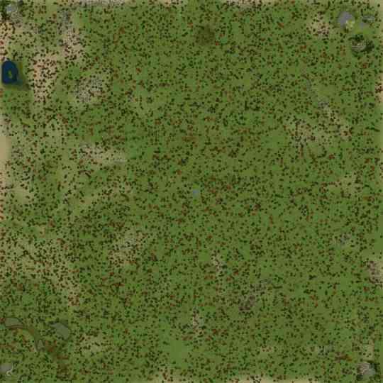 Forest-map-v041119-1