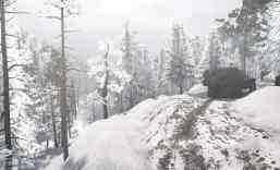 Dark-Forest-Snow-Map-v1-4