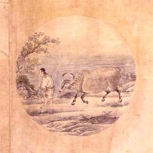 Kuòān Shīyuǎn's Ten Bulls 5: Taming the Bull