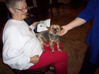 2019 Blessing of the Animals at St. Mark's, Kimberling City.Supplied image