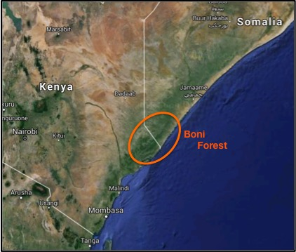 The Boni Forests straddles the border between Somalia and Kenya. Recently, al-Shabaab has moved into the area fleeing AU troops in Somalia.