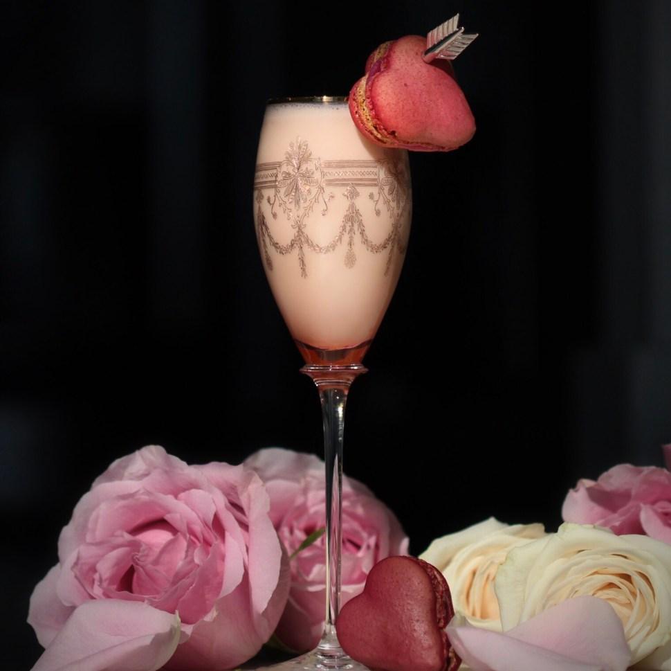 Luxardo Cocktail