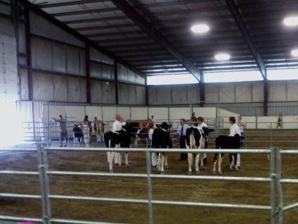 4a Grant County Fair