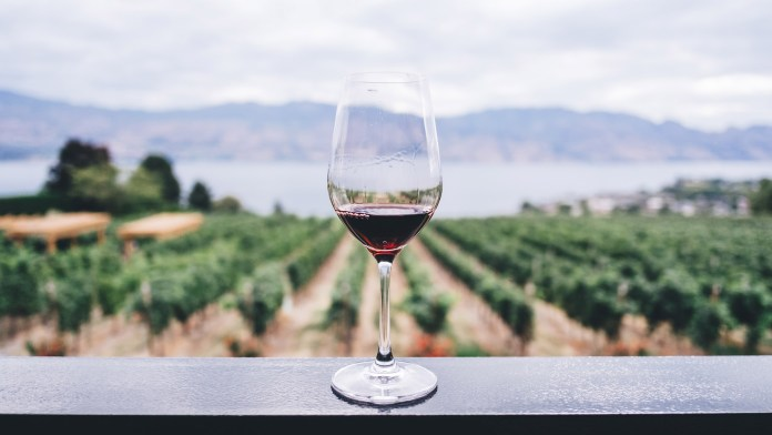 The Best Value Pinot Noirs, According To Wine Searcher