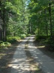 Pigeon River Forest, Michigan