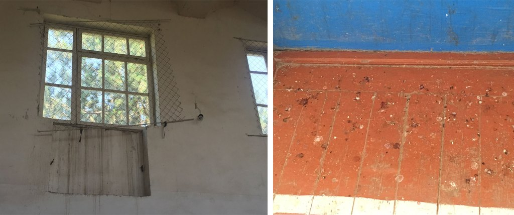 Broken window screens allow in birds that leave droppings all over the gym floor