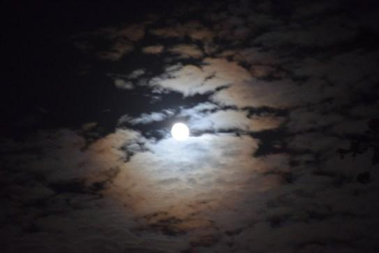Beginning of the Super Moon Lunar Eclipse