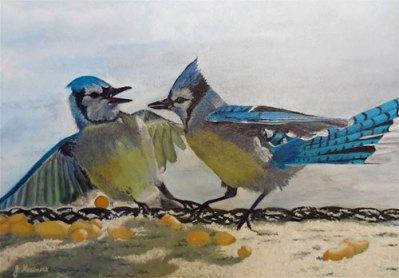 Scrapping Jays by Josie Korimsek