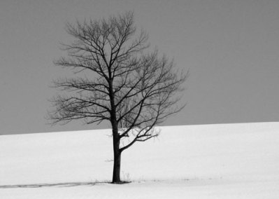 Standing Alone by Margaret Hamilton