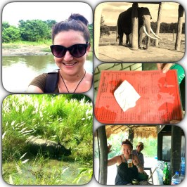 Chitwan challenges and successes.