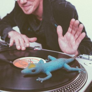 DJ Lounge Lizard