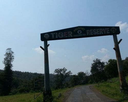 Melghat – Most under-rated Tiger reserve of India